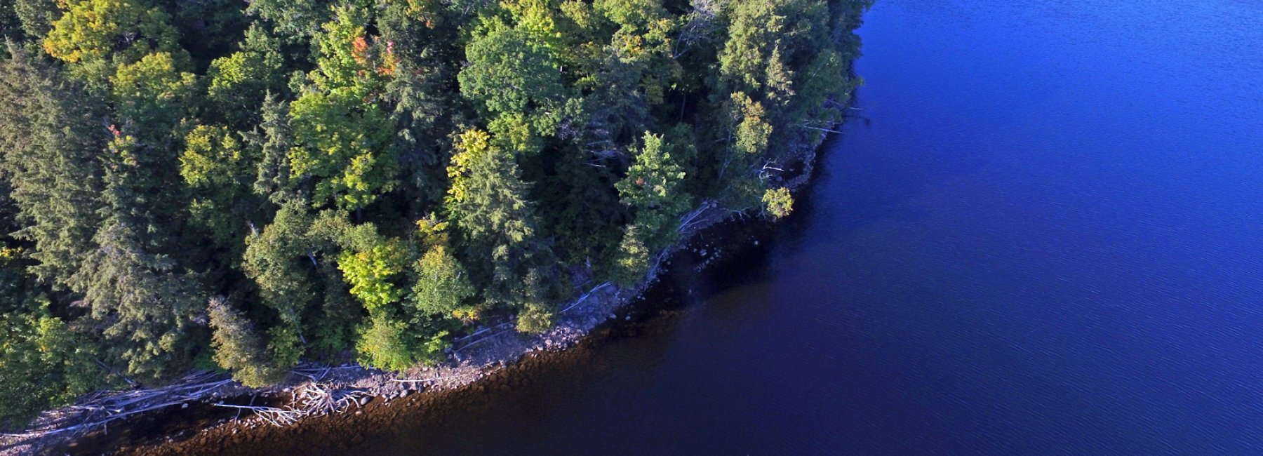 Lot 26, Flatwater Cove Road, Haliburton - Percy Lake