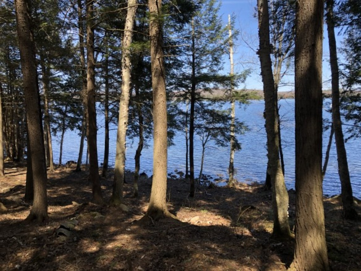 Lot 3, Hodgson Road, Halibuton Lake, Haliburton