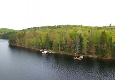 1270 Johnson Bay Road, Haliburton - Percy Lake thumbnail