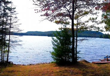 1581 Percy Lake Rd, Percy Lake - Haliburton thumbnail