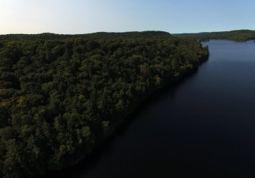Lot 19, Flatwater Cove Trail, Percy Lake, Haliburton thumbnail