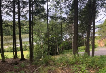Lot 3, Sumac Trail, Gull Lake, Haliburton County thumbnail