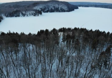 Lot 39 Bryson Trail, Haliburton - Percy Lake thumbnail